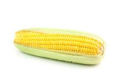 corns свежие Стоковая Фотография RF
