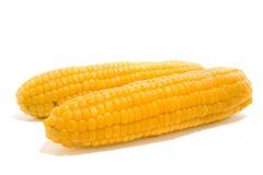 2 corns Стоковая Фотография RF