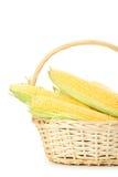 corns foto de stock royalty free
