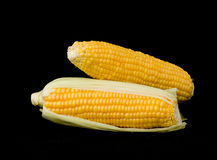 Corns. Isolated on black background Royalty Free Stock Photography