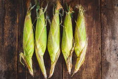 corns Stockfotografie