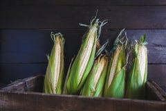 corns Stockbilder