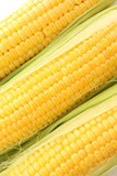 corns  background Royalty Free Stock Photography