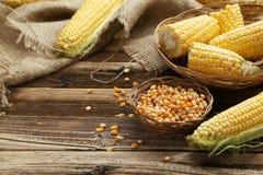 Corns Stock Images