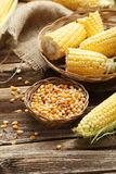 Corns in basket Royalty Free Stock Photos