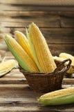 Corns in basket Stock Image