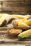 Corns Stock Image