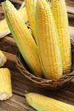 Corns in basket Royalty Free Stock Photos
