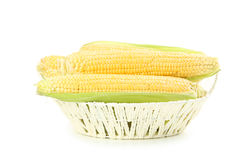 Corns in basket Royalty Free Stock Photography