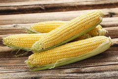 Corns Stock Photography