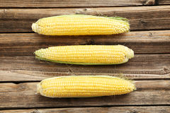Corns Royalty Free Stock Photo