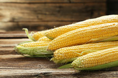 Corns Royalty Free Stock Image
