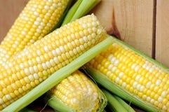 Corns in cob Stock Photos