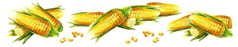 Corns composition. Watercolor. Hand-drawn illustration Stock Photo