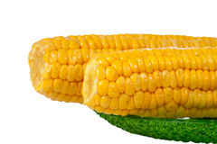 Corns on green plate Stock Images