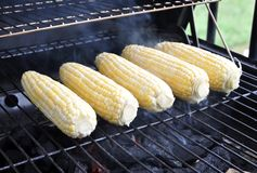 Corns in a grill Stock Images