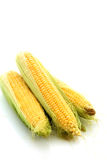Corns isolated Royalty Free Stock Photos
