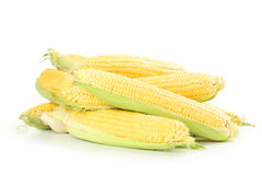 Corns Royalty Free Stock Images