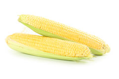 Corns Stock Photo