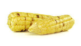 Corns isolated on the white background Stock Photography