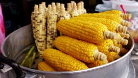 Corns. In process of steaming corns Stock Photo