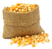 Corns in sack bag Stock Photos