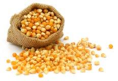 Corns in sack bag stock photography