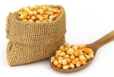 Corns in sack bag with spoon Stock Image