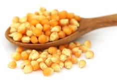 Corns with spoon Stock Photo