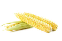 Corns Royalty Free Stock Photography