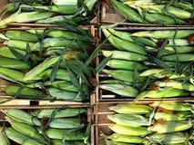 corns vegetais Fragmento de uma loja das frutas e legumes foto de stock royalty free
