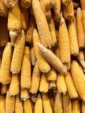 corns Vegetais naturais, vitaminas naturais fotos de stock royalty free