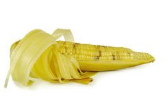 Corns  on the white background Stock Photography