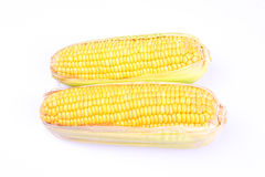 Corns Royalty Free Stock Photography