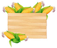 Corns in wooden bucket Stock Image