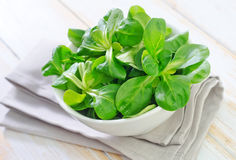 Cornsalad. In the white bowl stock photography