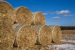 Cornstock bales. Royalty Free Stock Images