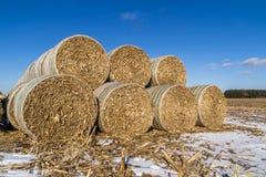 Cornstock bales. Royalty Free Stock Image