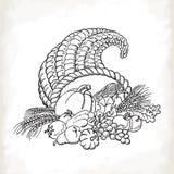 Cornucópia da ação de graças no estilo do esboço Cartão no fundo branco ilustração stock