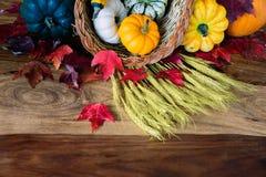 Cornucópia na tabela da colheita - parcial Imagem de Stock Royalty Free
