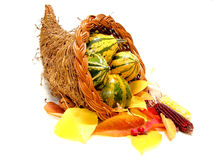 Cornucopia. A harvest or thanksgiving cornucopia filled with gourdes, dried corn and colorful autumn leaves Stock Photos