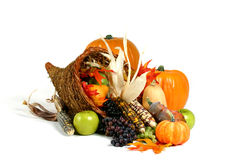 Cornucopia. Holiday theme: Thanksgiving cornucopia Stock Photos