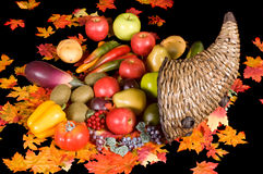 Cornucopia 4 Stock Photos