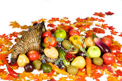 Cornucopia 5 Royalty Free Stock Photo