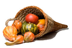 Cornucopia. The traditional Thanksgiving harvest celebration wicker cornucopia Royalty Free Stock Photography
