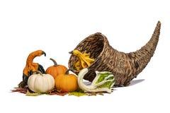 Cornucopia Basket & Gourds stock photo
