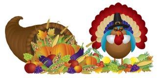 Cornucopia with Bountiful Harvest and Pilgrim Turk. Cornucopia with Bountiful Fall Harvest and Pilgrim Turkey Isolated on White Background Illustration Stock Images