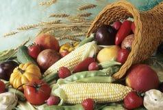 Cornucopia da colheita Foto de Stock