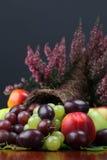 Cornucopia de la fruta Foto de archivo libre de regalías