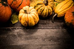 Cornucopia del raccolto di caduta Stagione di autunno con la zucca fotografie stock
